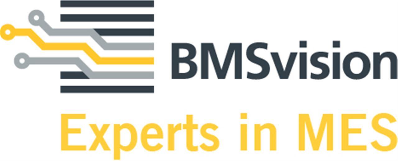 BMSvision